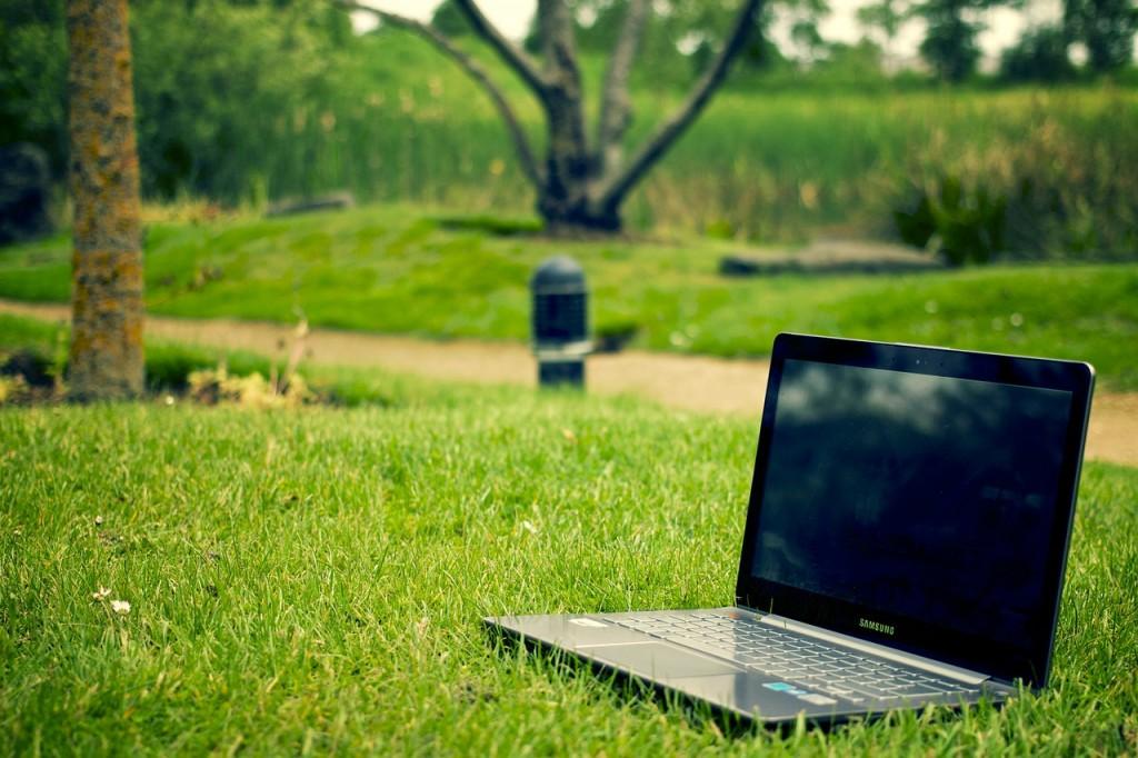 Laptop i gräset